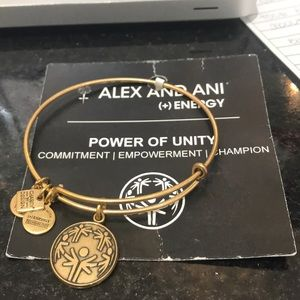 Alex and Ani power of unity bangle